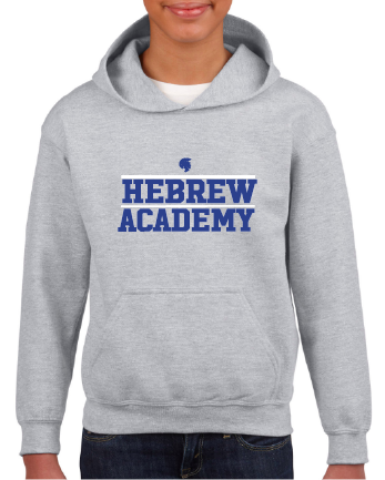 Youth Sport Grey Pullover Hoodie
